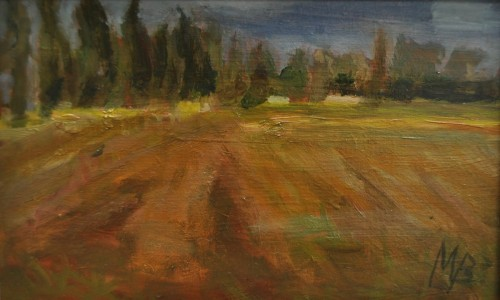 GRONINGERLAND, 2016. Olieverf op paneel 10x15